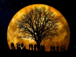 Tree Party at the Full Moon!