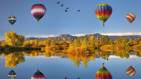 hot air balloons and geese reflected in a lake - geese, autumn, balloons, reflections, trees, lake
