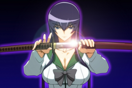 saeko & the sword of beauty - saeko busujima, high school girl, pretty girl, long hair, sword