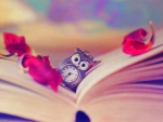 ✫Bookmark of the Time✫