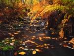 Autumn whirlpool