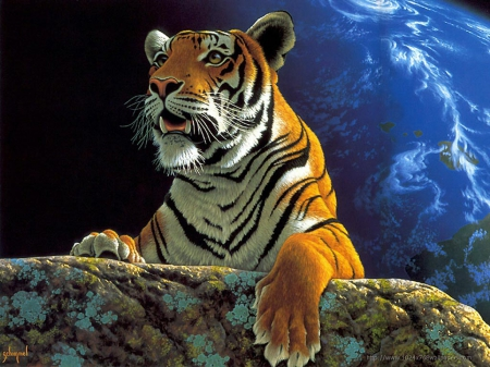 Fantasy Tiger Cats Animals Background Wallpapers On