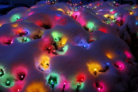 Snow Christmas Lights