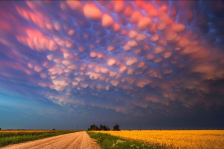 Cotton Candy Nebraska Sky - candy, nebraska, puffy sky, Mammatus, corn field, sky, puffy, cotton, cotton candy, skies, surreal, beautiful sky, cornfield, Cloud Formation, pink, pink sky