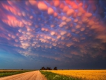 Cotton Candy Nebraska Sky