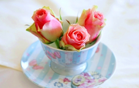 three buds of roses in a cup flowers nature background