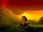 lion of judah