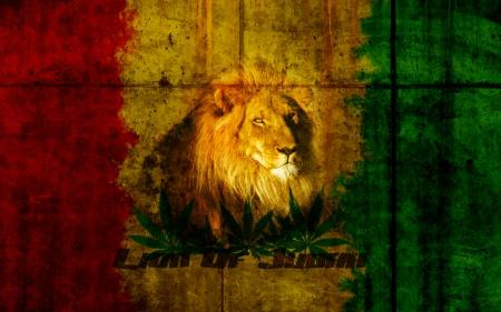 Lion Of Judah Cats Animals Background Wallpapers On Desktop