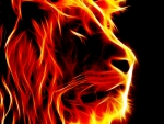 fire lion