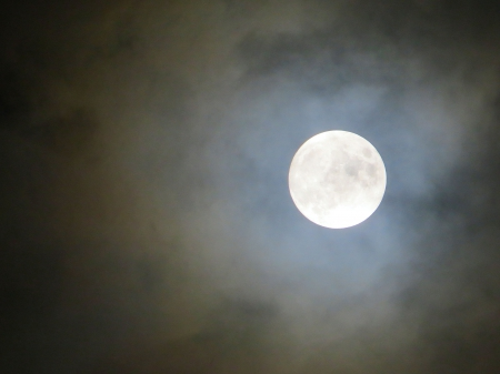 Shrouded in Mystery - moon, nature, november, space