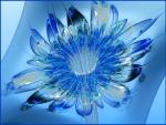Bloom in blue