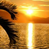 ~*~ Sea Sunset ~*~
