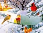 Mailbox treasures