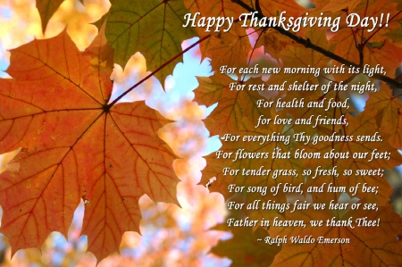 Thanksgiving Day Message - Other & Abstract Background Wallpapers on  Desktop Nexus (Image 1617764)
