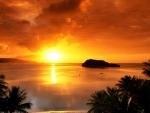 gorgeous tropical sunset