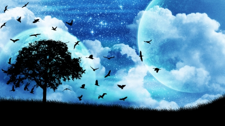 Blue sky birds - stars, pulze, planets, mrkerfuffles, birds, trees, sky, silhouette, clouds, fog, blue, night