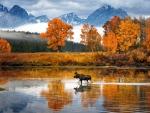 autumn at a lake