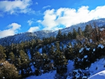 Beautiful Wrightwood, CA