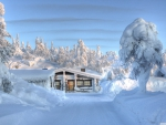 Heavy Snow Cabin