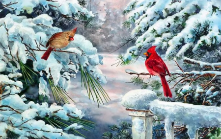 Winter cardinals other abstract background wallpapers - Winter cardinal background ...