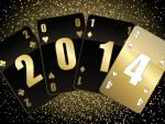 New Year 2014(✿◠‿◠)