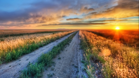 Dirt Road Through Fields At Gorgeous Sunset Hdr