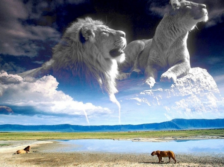 tigers lions - special, beautiful, predator, jungle, tigers lions, photoshop, camaflauge, animals, fantasy art
