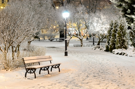 *** Wonderful winter in park *** - snow, nature, park, night, winter