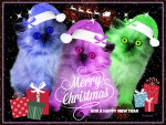 ♥ *Merry*Christmas*To*Everyone* ♥
