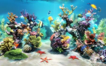 ocean life oceans nature background wallpapers on desktop nexus