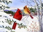 ★Cardinals & Hemlock Trees★