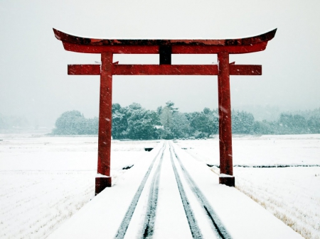 Torii Of Shrine Winter Nature Background Wallpapers On Desktop