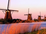 windmills at home