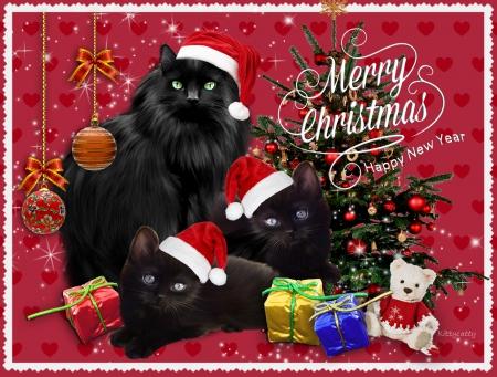 Merry Christmas*Happy New Year ♥ - Cats & Animals Background Wallpapers on Desktop Nexus (Image ...