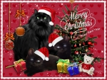 ♥ Merry Christmas*Happy New Year ♥
