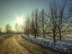 dirt road in winter under sun rays