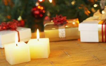 Christmas candles - tree, photography, christmas, candles