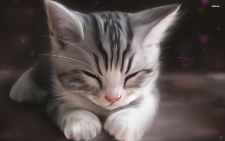 Anime cat - kittens, kitty, cat, cats, anime, kitten, cute kittens, cute