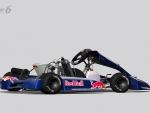 Red-Bull-Racing-Kart