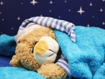 Sweet Dreams, dear Teddy!♥