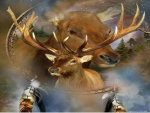 spirit of the elk