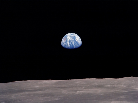 Earth Rising - moon, earth, orbit, space