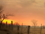 wooden fence post on a farm at sunset
