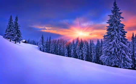 Winter nature backgrounds Iphone Beautiful Winter Forest Nature Snow Winter Desktop Nexus Nature Beautiful Winter Winter Nature Background Wallpapers On