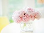 ✿ Precious Petals ✿
