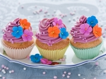 Sweet and colored cupcakes