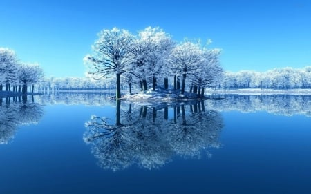 Reflecting frosty trees - mirrored, cold, calm, river, reflection, frost, quiet, clear, sky, trees, lake, water, serenity, ice, day, nature, branches