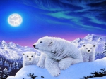 Relaxing Polar Bears