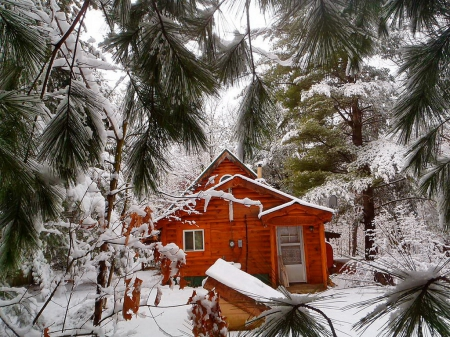 Cabin In The Woods Winter Nature Background Wallpapers On