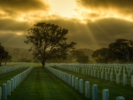 heavenly sun rays over a military cemetery